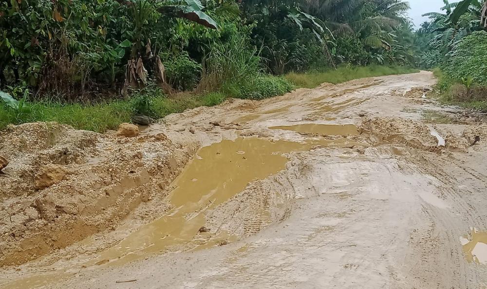 Rusak Parah, Warga Keluhkan Jalan Desanya di Konsel Mirip Sawah